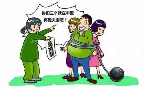 重婚的社会调查_社会能见度 援交学生调查_社会实践活动调查