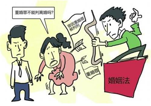 重婚离婚纠纷调查_离婚 一方 股东 调查_离婚析产纠纷