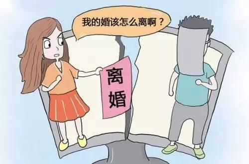 重婚离婚纠纷调查_离婚析产纠纷_离婚 一方 股东 调查